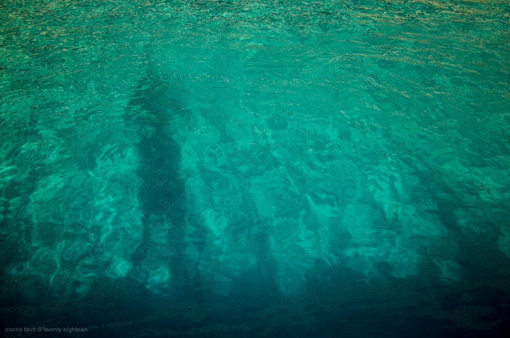 Self portrait in water.