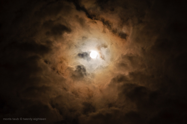 Moon and clouds over miami beach, Florida.