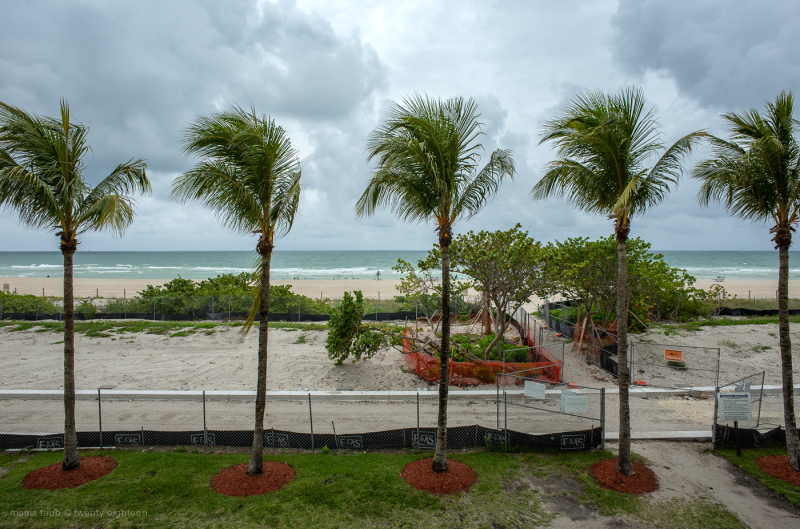 Miami Beach Florida with palm trees and bathers.