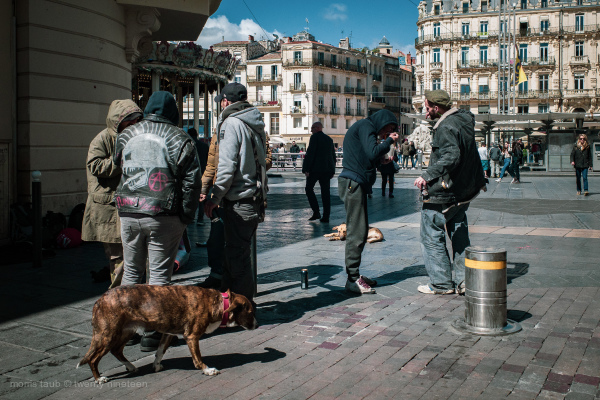 Homeless men with their dogs talking, eating.