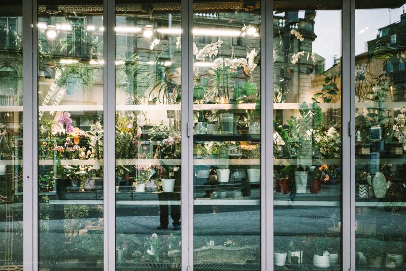 Flower shop window.