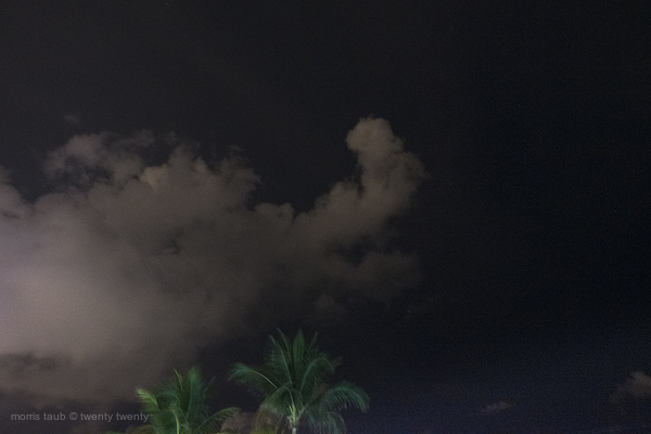Clouds and palm trees over Miami Beach florida.