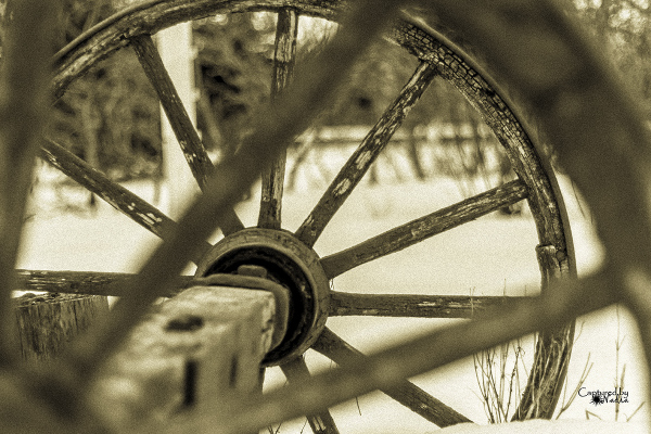 Through the wagon wheel