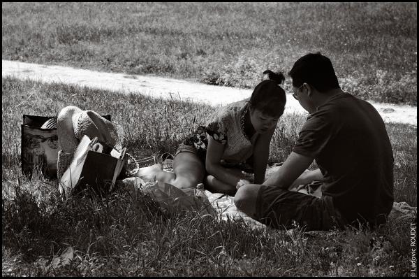 Le déjeuner sur l'herbe #1