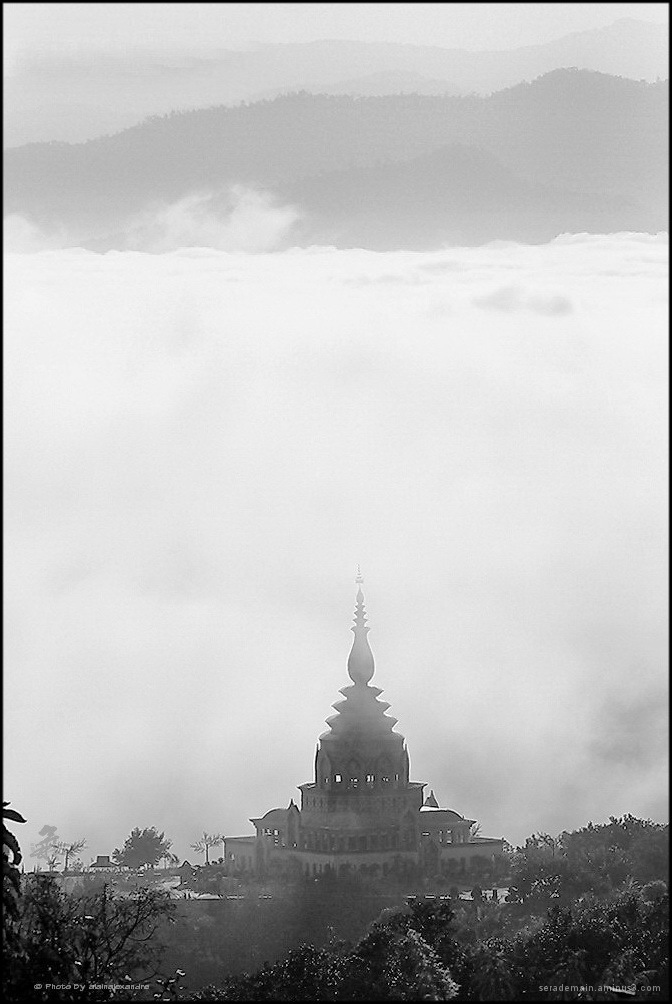 In the morning of Mist