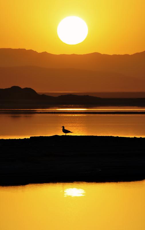 MEYGHAN LAKE _ ARAK _ IRAN