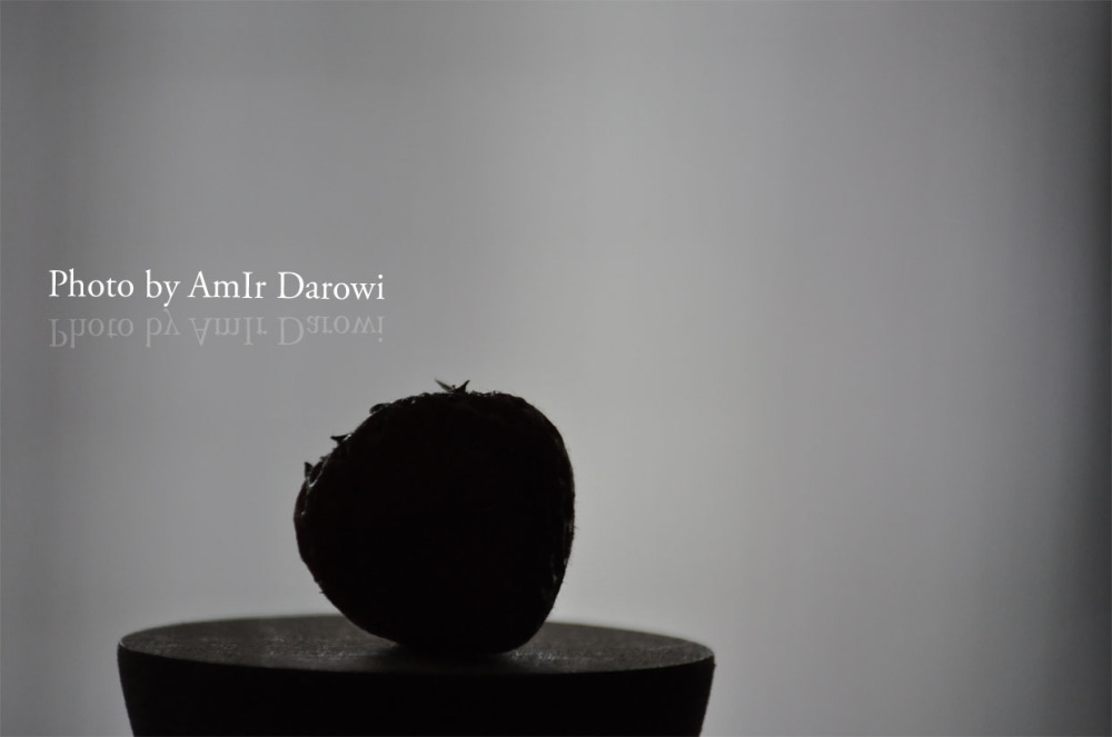 Art & Design  - Photography by AmIr Darowi © 2013