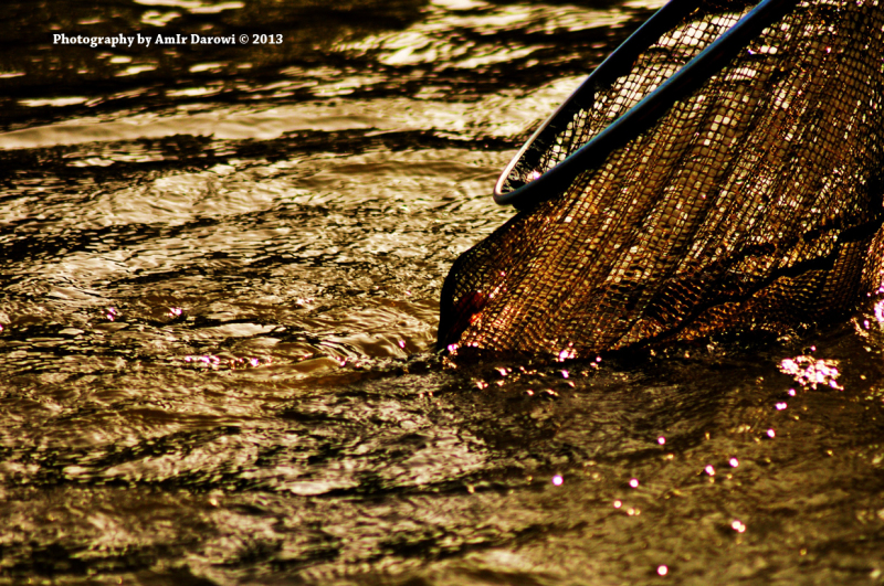 fishing tournament - Photography by AmIr Darowi ©