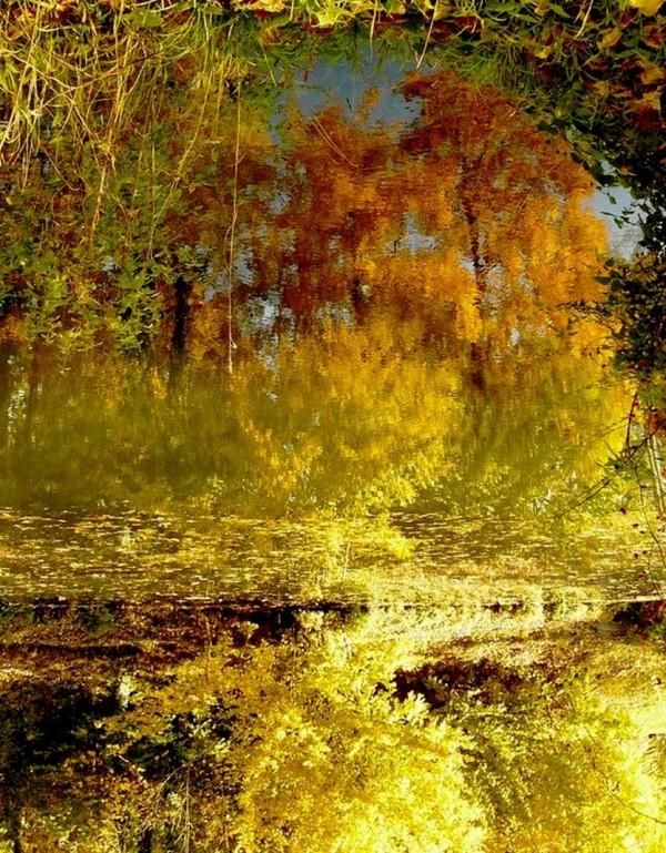 Automne, automne, long automne