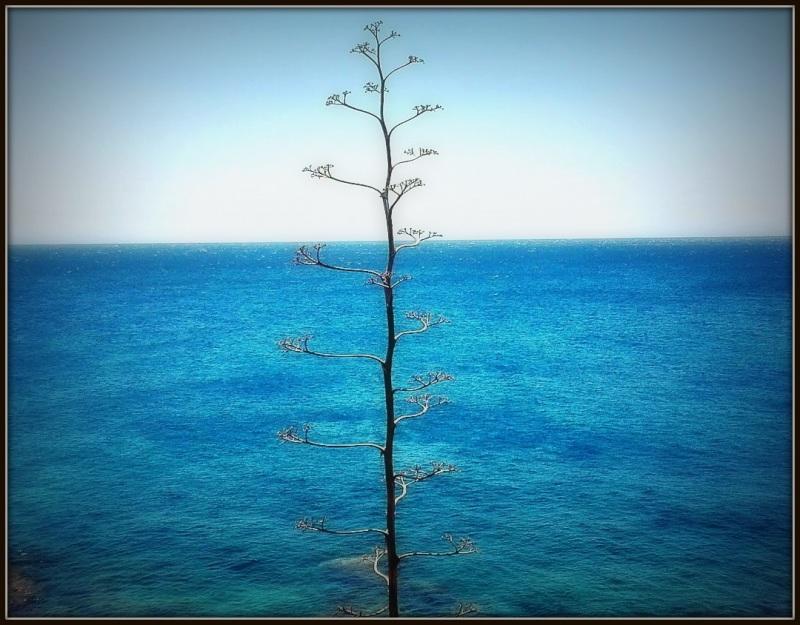 océanos...