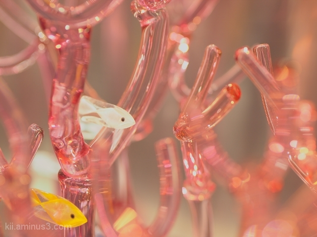 Glass Made Glassfish