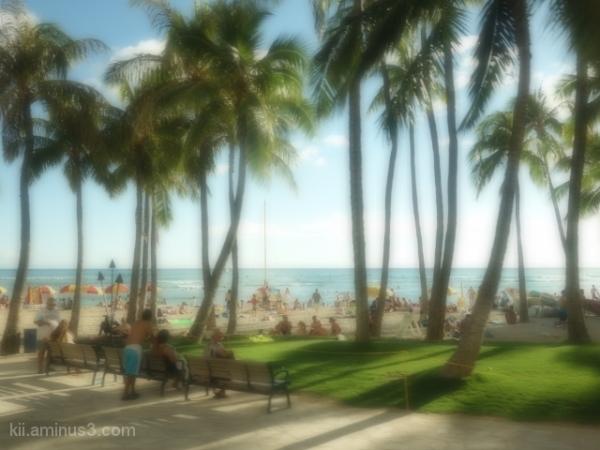 A Day in Waikiki