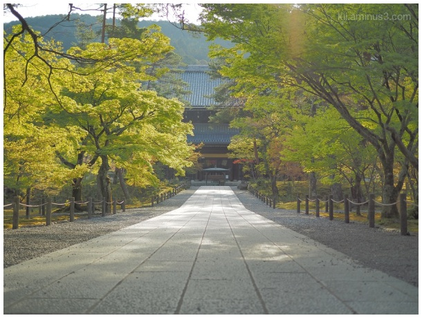 Nanzen-ji Temple in the morning light