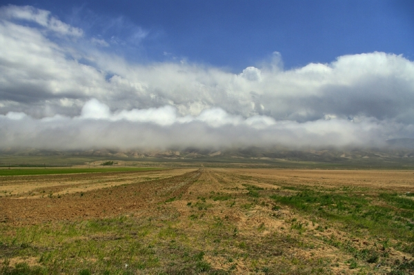 Landing Fog