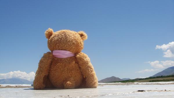 teddy... (: