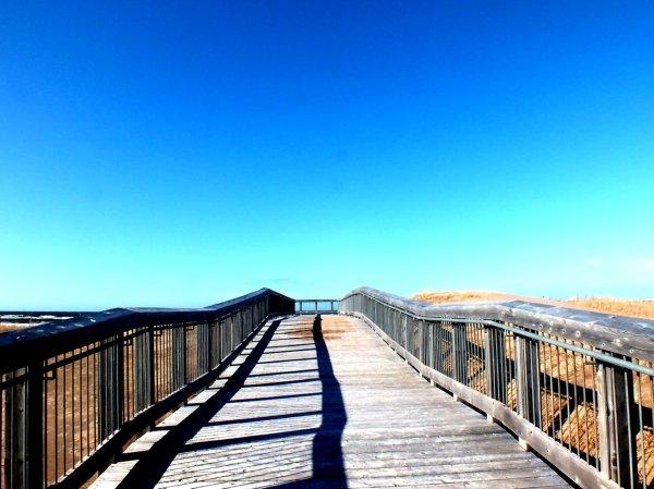 Brackley Boardwalk