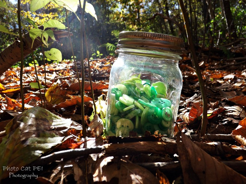 Buttons in a Jar on a Fall Day