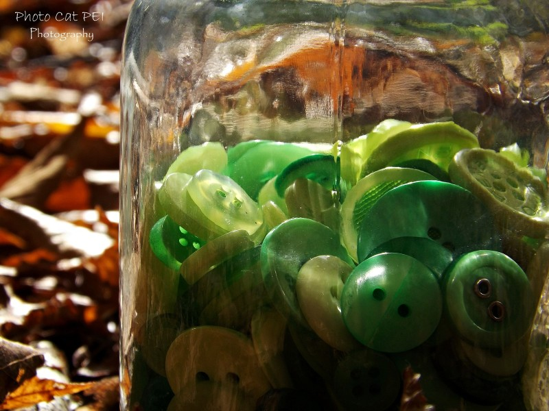 Close up of Green Buttons