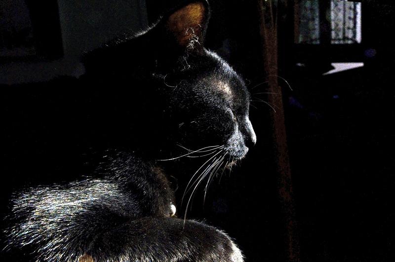sombre et lumineux