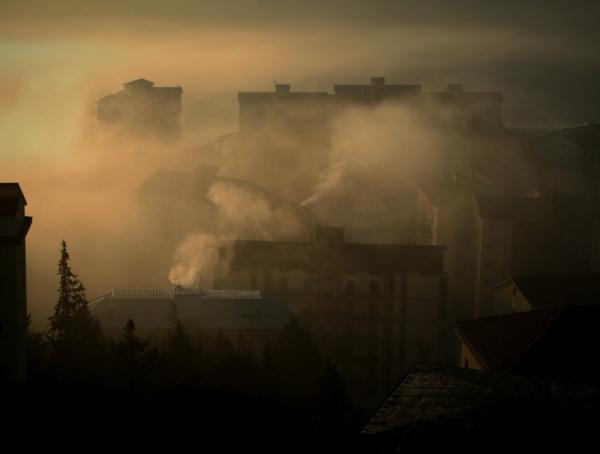 Dans la brume du matin ..