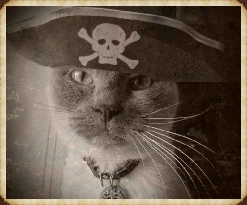 my old pirate
