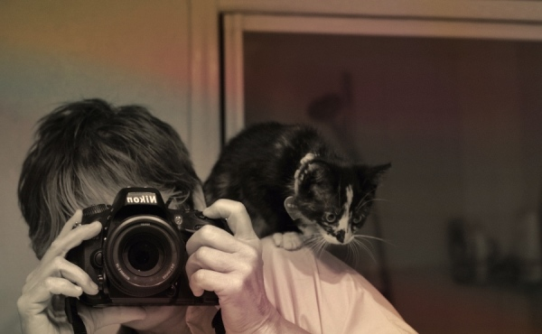 assistant photographe