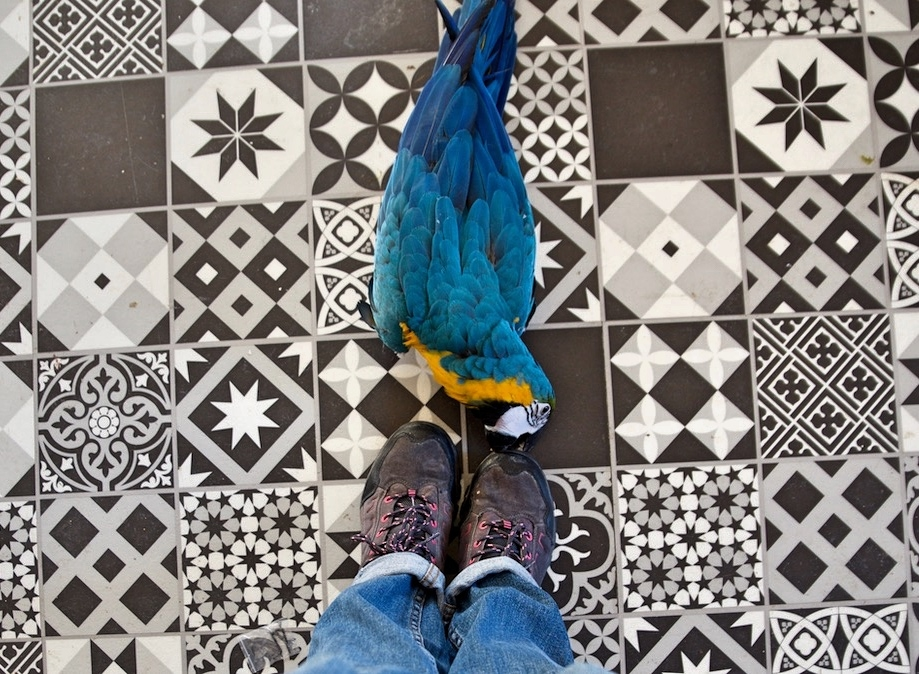 j'aime tes shoes