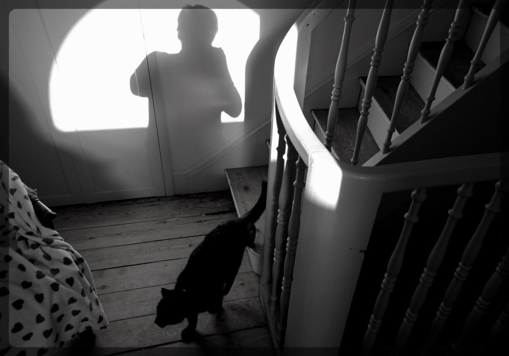 passage du chat noir