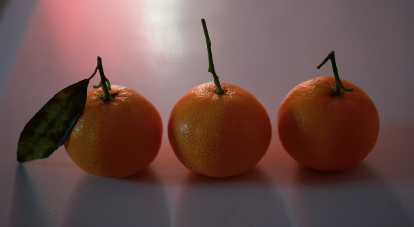 mandarines corses, of course