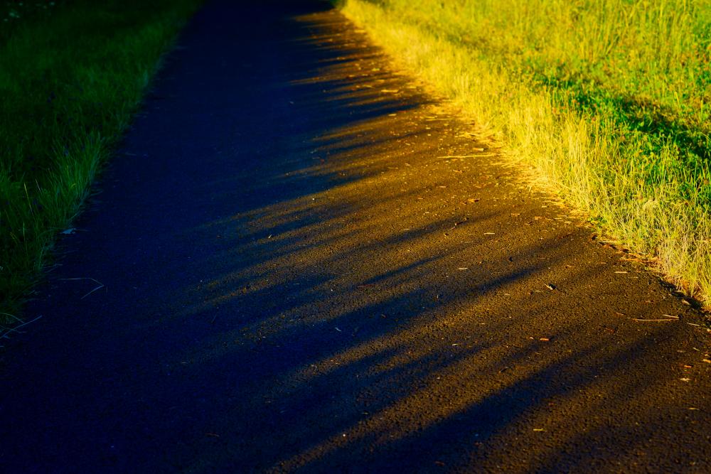 fin d'après midi rêveuse sur la piste cyclable