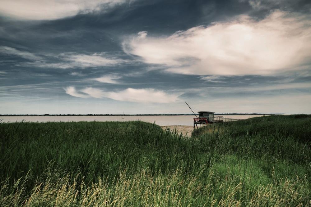 l'estuaire de la Gironde à Pauillac
