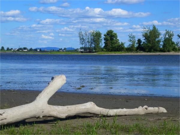 L' île St-Laurent sur le fleuve, Repentigny, Qc