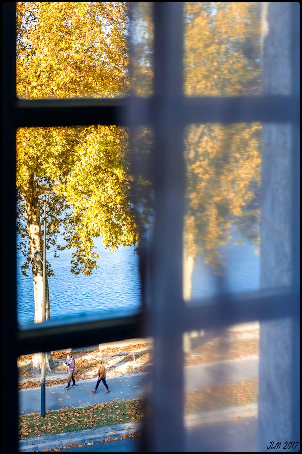 l'Automne à ma Fenêtre