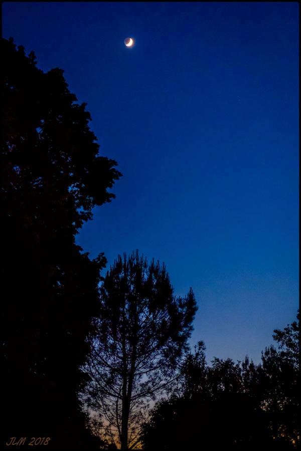 la Lune dans le Jardin.