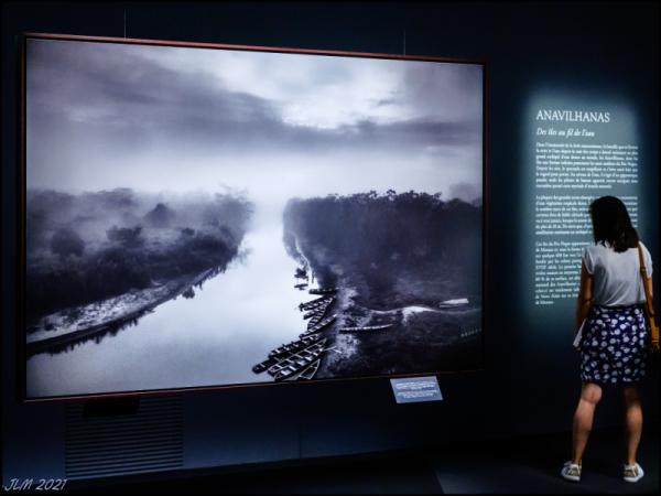 Fujifilm X-Pro2 Salgado Amazonia