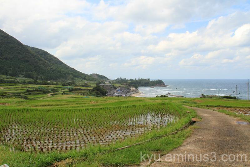 Terraced rice paddy at Sodeshi