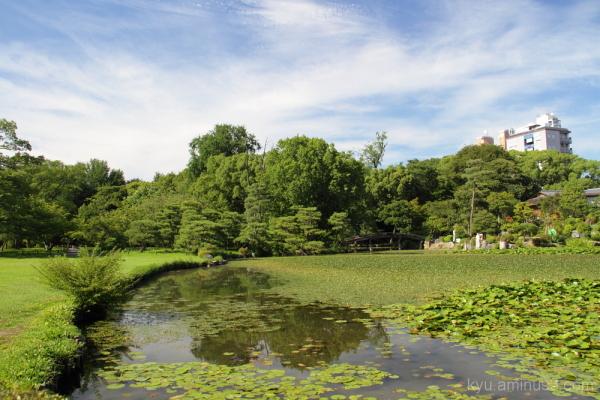 Garden of Kikokutei, 枳殻邸