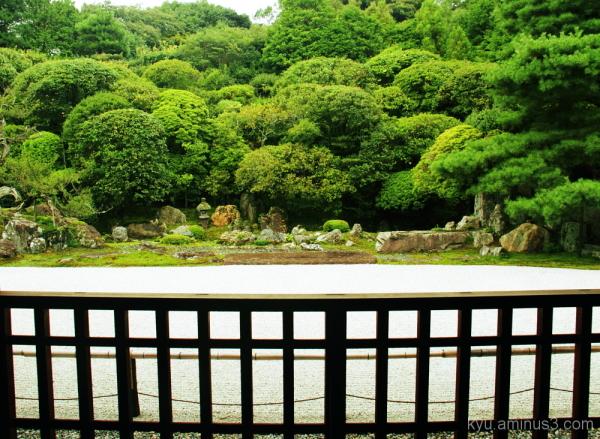 Dry landscape garden