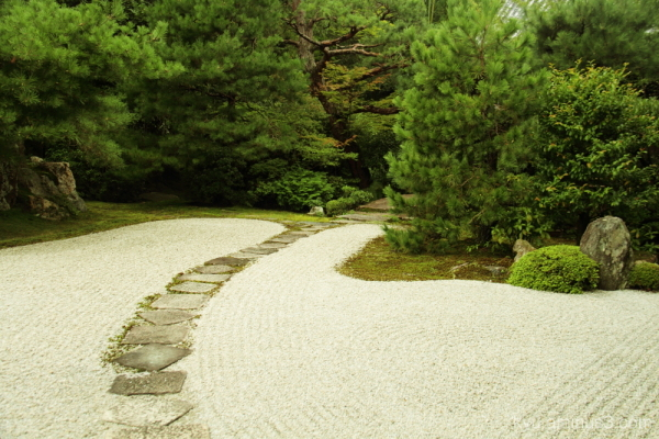 Garden with the curved stone path