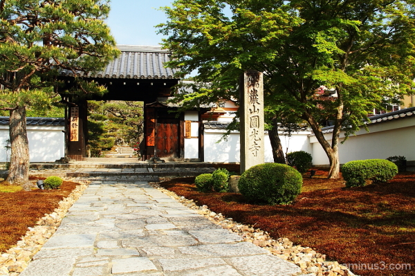 Through the gate of the temple