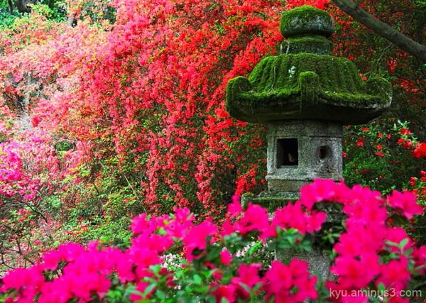 Stone lantern in flowers
