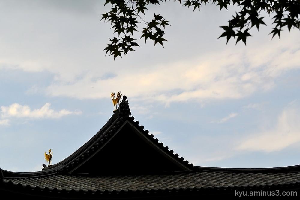 Phoenixes on the roof