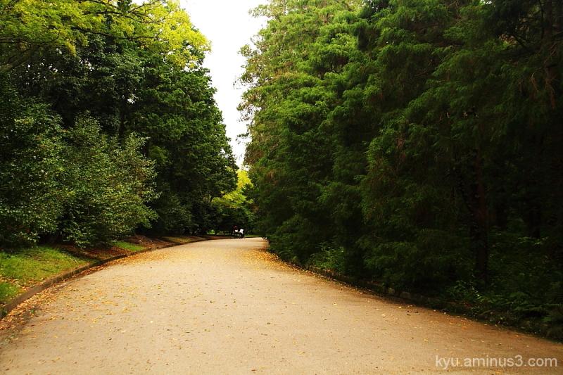 Curving path