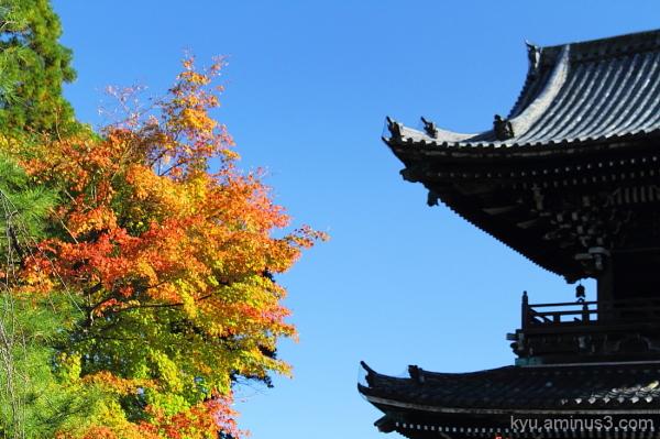 Seiryoji Temple Kyoto autumn