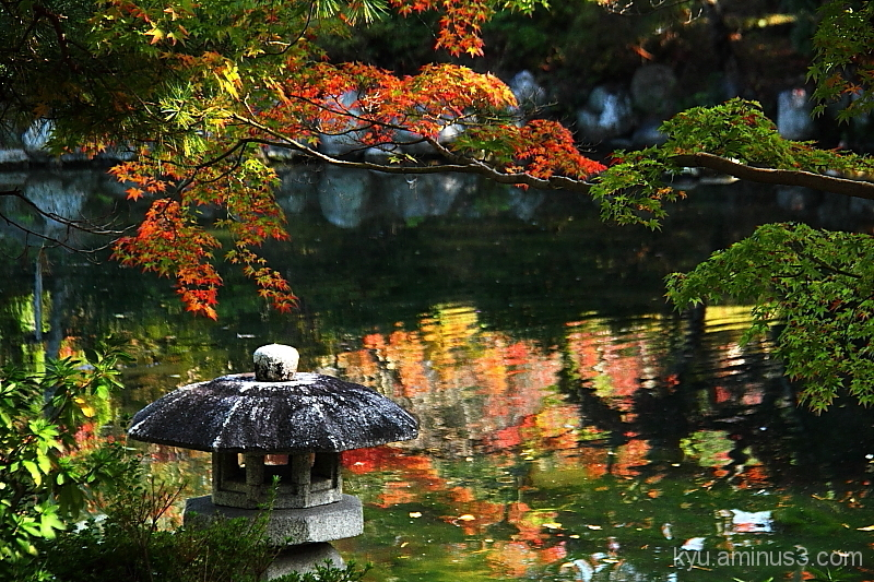 Stone lantern by the pond