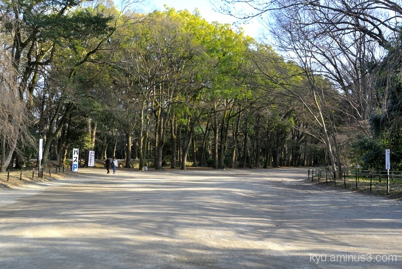Walking in Tadasunomori