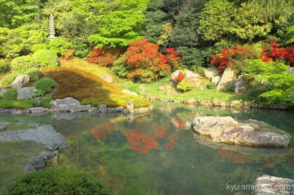 Garden with azalea blossoms