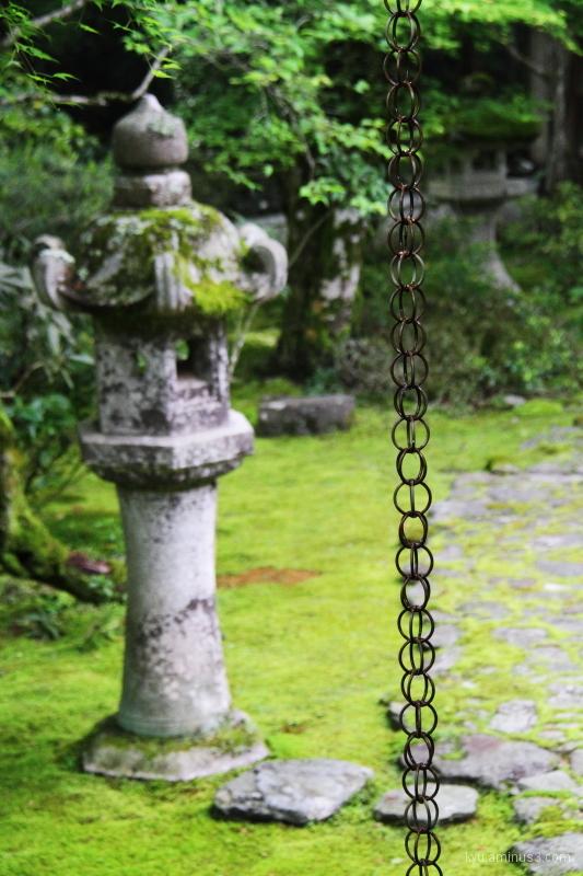 Drain chain