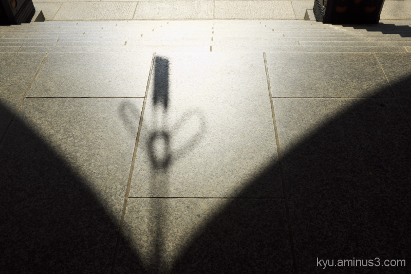 Shadow in silence