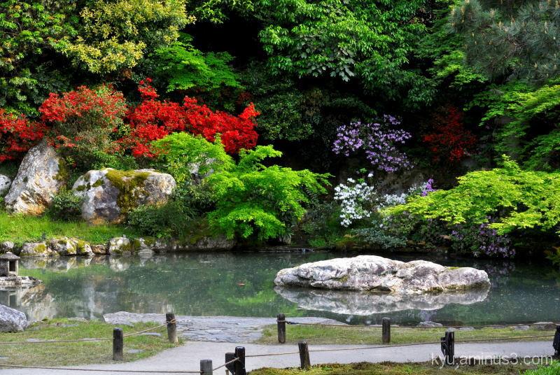 Garden in colors